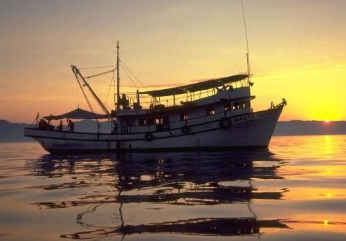 თევზსაჭერი გემი