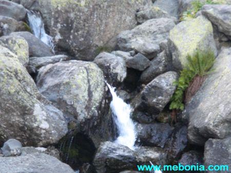წყაროს წყალი